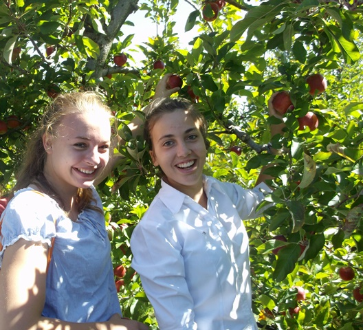 Lina and Celine picking apples